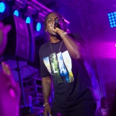 Pusha T (Bosco Fresh Fest 2014, Moscow)