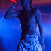 Die Antwoord (Park Live 2014, Moscow)